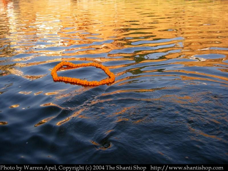 Offrande de fleurs à Ganga